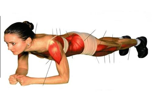 Plank spieren