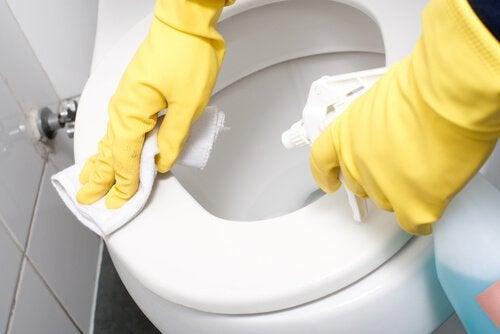 Het toilet schoonmaken