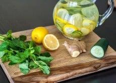citroen, gember en komkommer