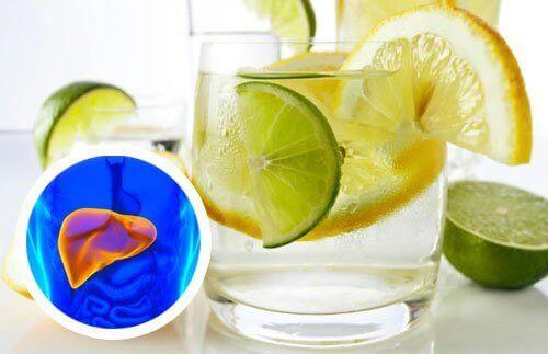 citroenwater-lever