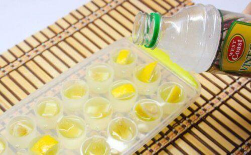 IJsblokjes met Citrusschillen