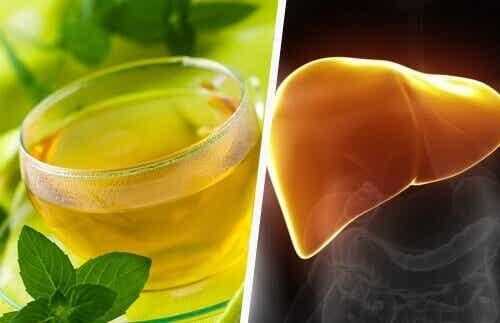 Voedingsmiddelen om je lever te genezen