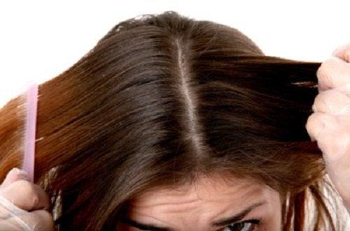 Schoon Haar