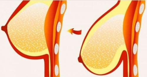 Acht tips en behandelingen voor hangborsten
