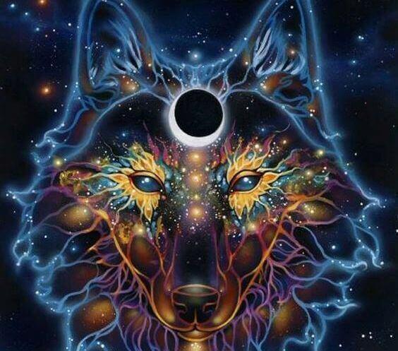 wolf gemaakt van sterren