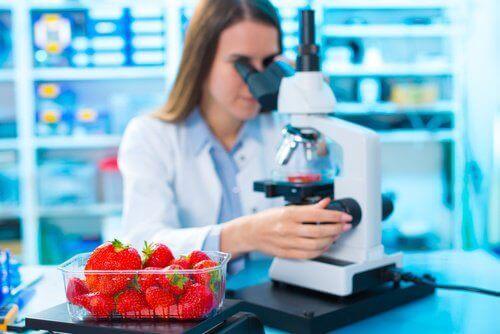 Microscopisch Onderzoek