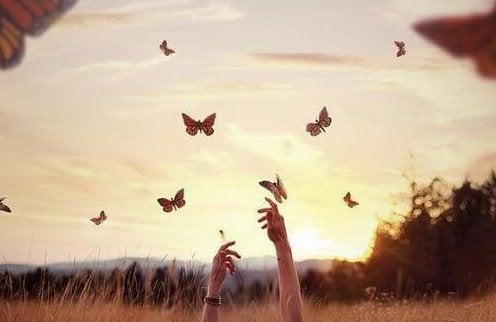 vlinders in de lucht