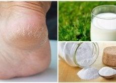 zachte-voeten