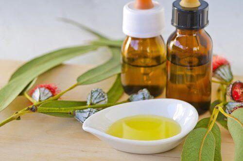 Eucalyptusolie in flesjes en een schaaltje
