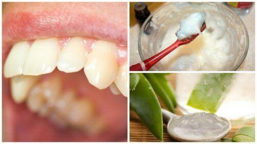 Bestrijd tandplak met deze natuurlijke remedies