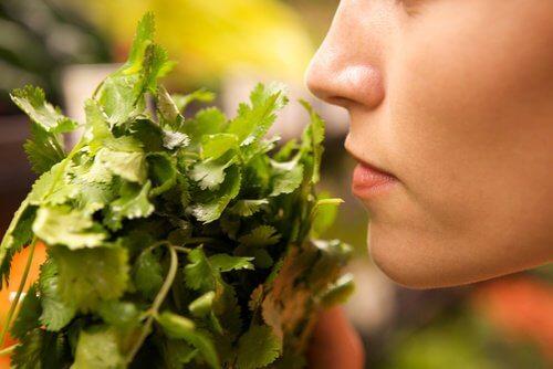 Wat je moet vermijden bij het bewaren van voedsel zoals bijvoorbeeld het blindelings vertrouwen op geur