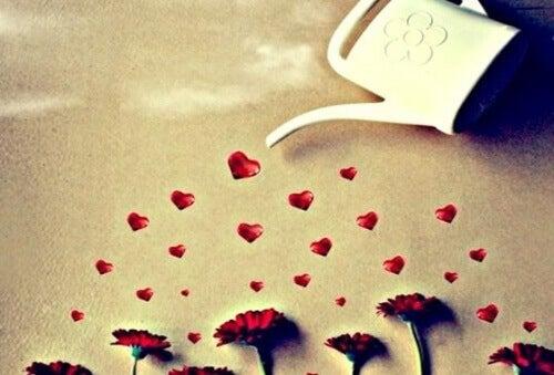 Liefde Laten Groeien