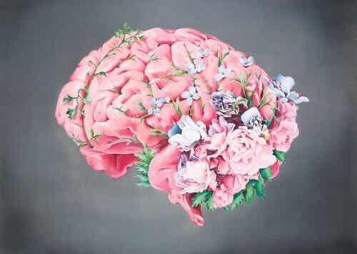 Vriendelijkheid: een geweldige manier om voor je hersenen te zorgen