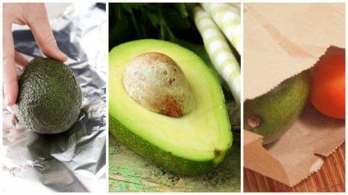 5 tips om een avocado snel te laten rijpen