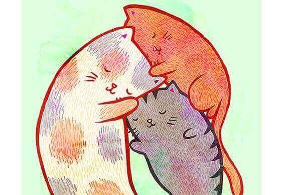getekende slapende katjes