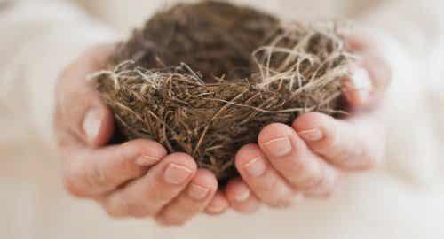 Legenestsyndroom: eenzaamheid in je huis