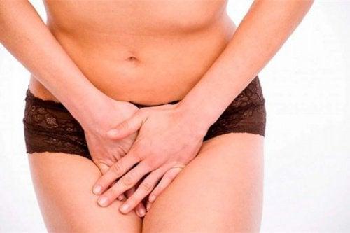 Voedingsmiddelen voor de vaginale gezondheid