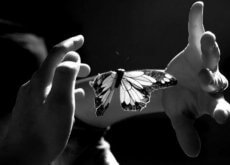 vlinder-handen