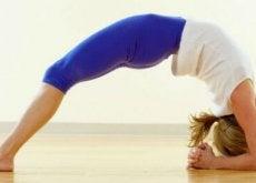 Yogahoudingen
