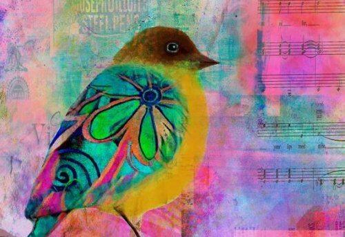Een vogel