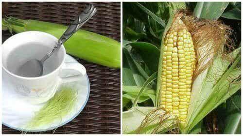 Negen voordelen van maïshaar