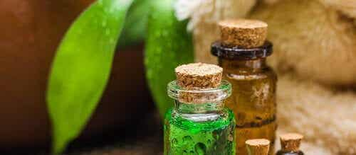 Tea tree olie: de geweldige olie die veel voordelen biedt