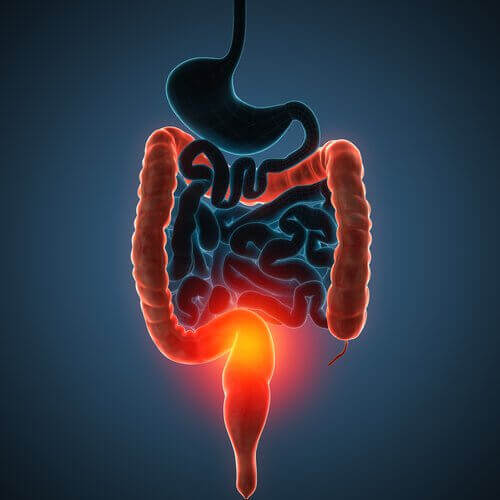 4 sappen voor het ontgiften van je dikke darm