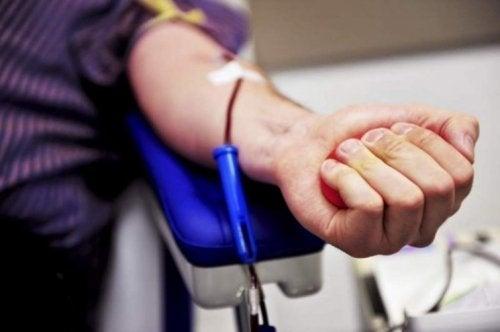 Hoe je beenmergdonor kunt worden