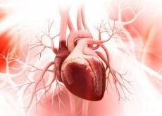 Slechte Gewoontes Hart