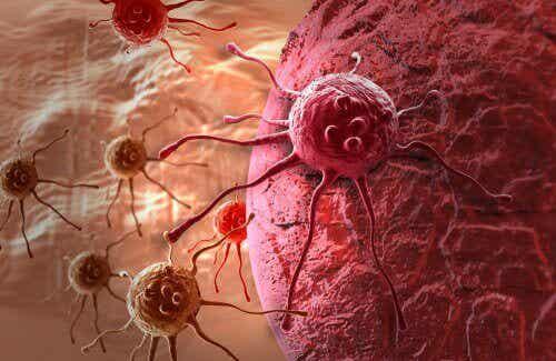 Behandeling van kanker als aanvulling op chemotherapie