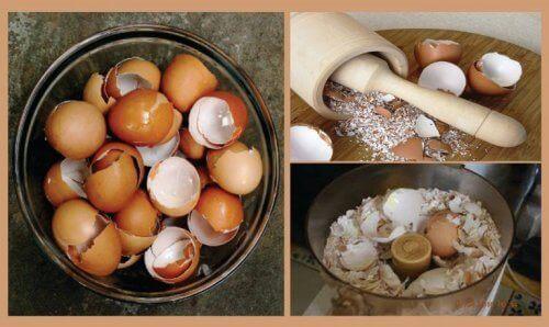6 natuurlijke remedies met het gebruik van eierschalen