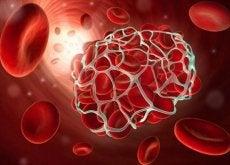 Rode bloedcellen