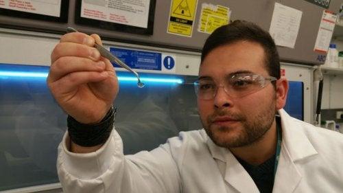 Hydrogel hoornvliezen kunnen het gezichtsvermogen teruggeven
