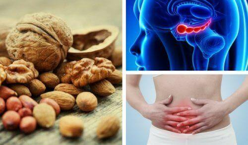 7 voordelen van walnoten die je waarschijnlijk niet kent