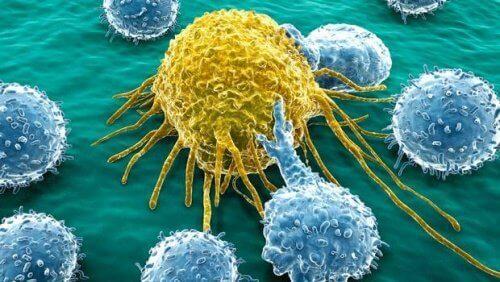 Alvleesklierkanker behandelen met nieuw molecuul