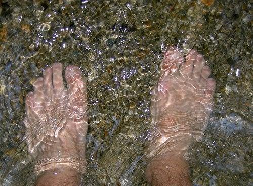 Voeten in het Water