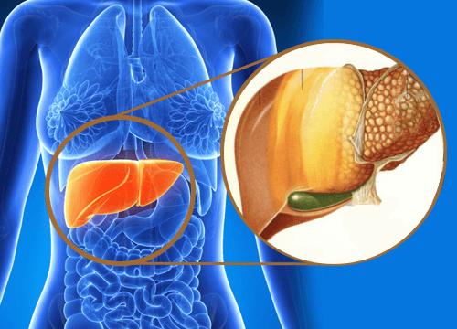 Problemen met je lever? 9 signalen dat gifstoffen zich opstapelen in de lever