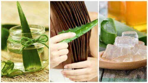 5 behandelingen met aloë vera om je haar te versterken