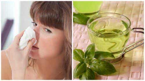 Een verstopte neus verlichten met deze 5 natuurlijke remedies