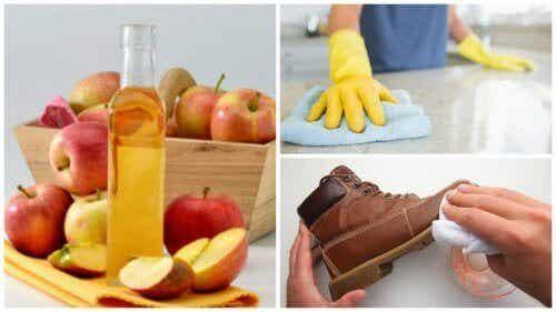 De zeven beste manieren om appelazijn in huis te gebruiken