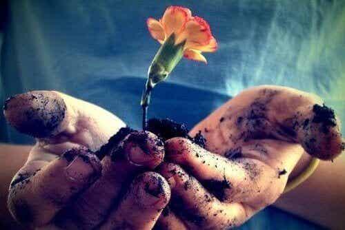 Liefde moet dagelijks verzorgd worden om te kunnen bloeien