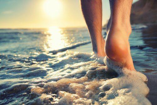 Vakantie houdt ziekten op afstand