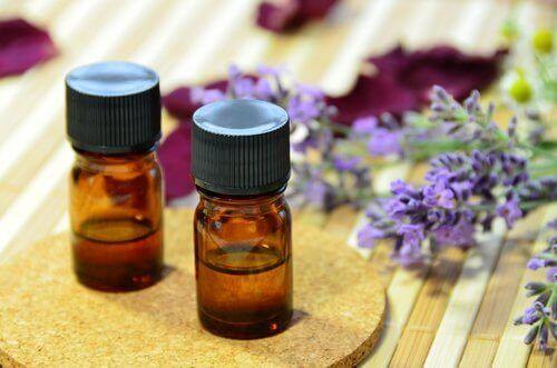 Lavendelolie tegen huisvliegen