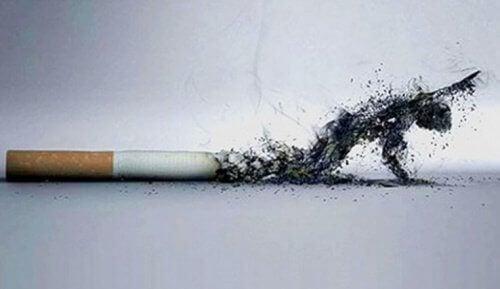 5 manieren waarop stoppen met roken je uitstraling verbetert