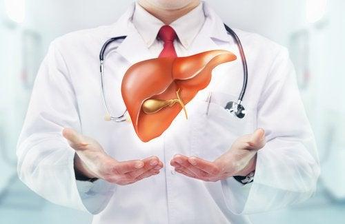 peterselie-muntthee foto van lever