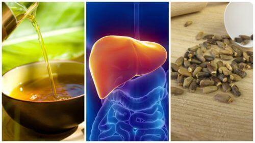 Leververvetting bestrijden met 6 alternatieve behandelingen