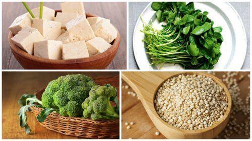 Het derde niveauvan de voedingspiramide