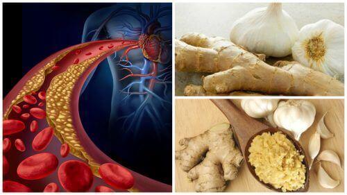 gember en cholesterol