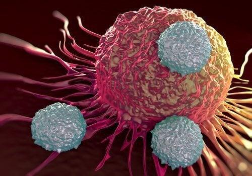 Een alkalisch dieet en kanker