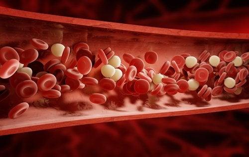 9 bloedzuiverende kruiden en specerijen